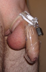 Chastity cage.jpg